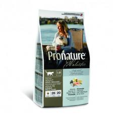 Pronature Holistic - Корм для кошек, для кожи и шерсти, лосось с рисом