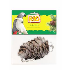 Лакомство-игрушка Кедровая шишка для крупных и средних попугаев