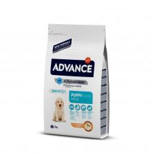 Advance - Корм для щенков крупных пород от 2 до 12 месяцев, с курицей и рисом (Maxi Puppy)