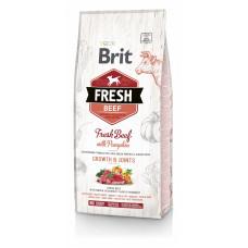Brit - Fresh для щенков крупных пород  с говядиной и тыквой ( Beef with Pumpkin Puppy Large)