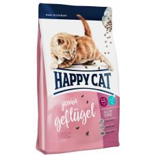 Happy cat - Для котят с птицей