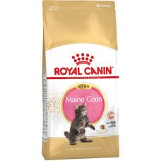Royal Canin - Для котят Мейн-кун: 4-12мес.